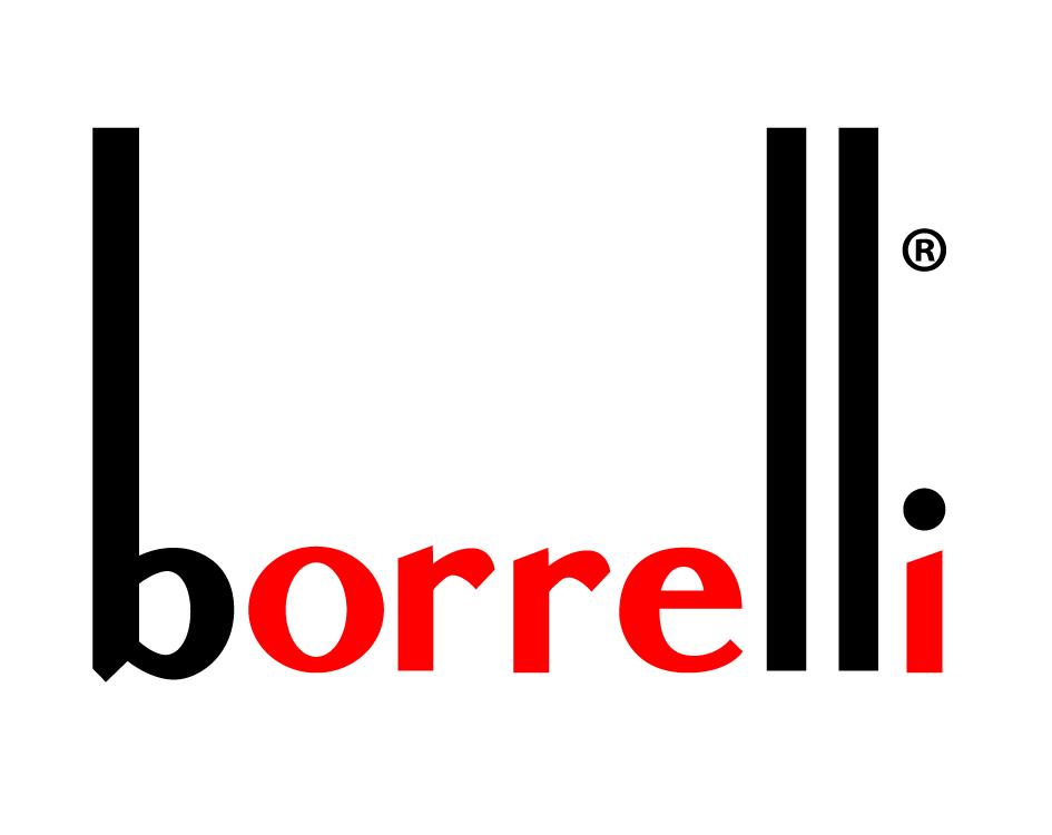 Buono sconto BORRELLI STORE logo