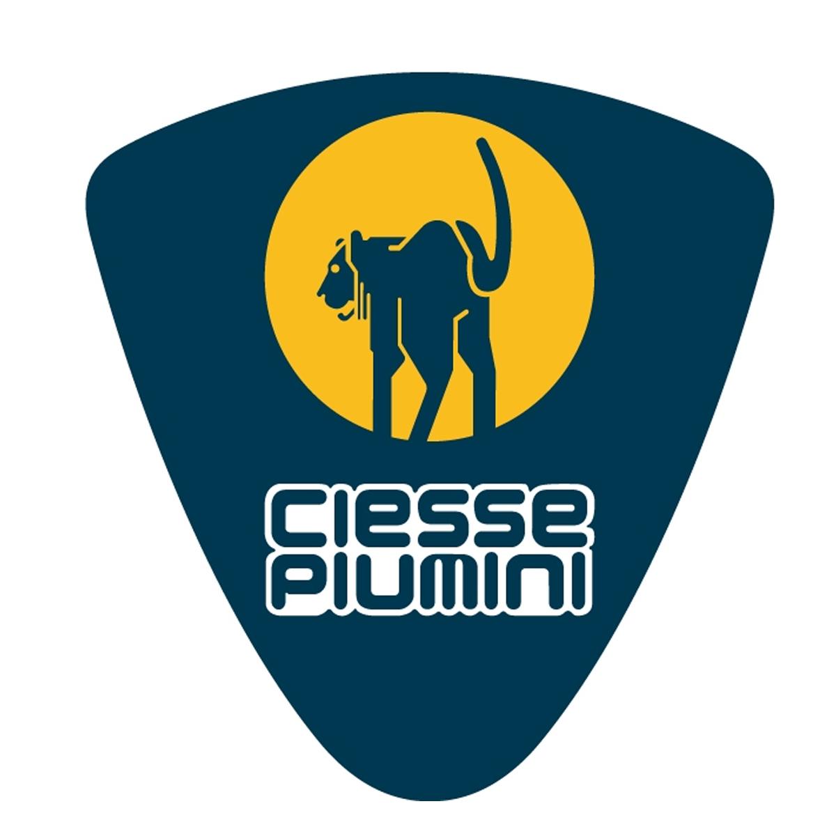 Buono sconto Ciesse Piumini logo