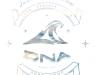 DNA Surf